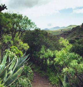 Hyrbil & biluthyrning på Gran Canaria